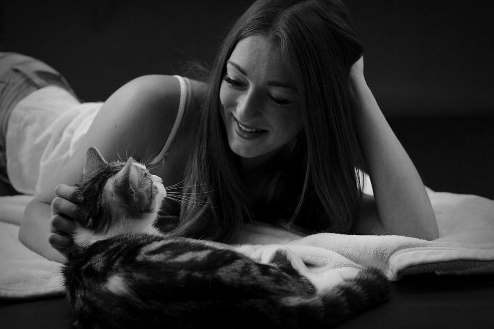 4. Ibu hamil tidak boleh dekat-dekat kucing