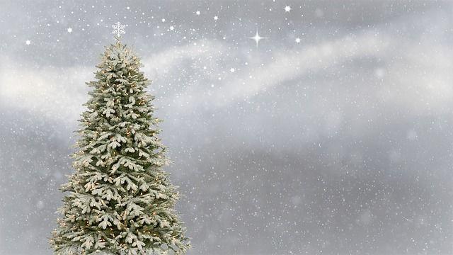 Tradisi Hari Natal Perlu Diketahui Anak Mama