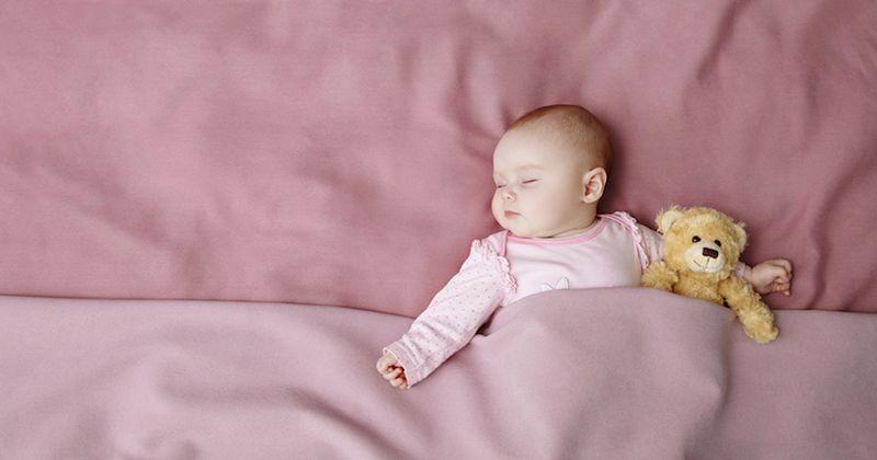 Teori Penyebab SIDS