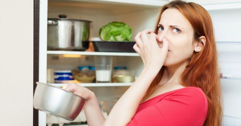 3. Apa dimaksud aversi makanan