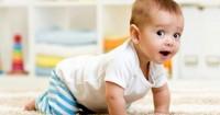 Perkembangan Bayi Usia 8 Bulan 1 Minggu Lahir si Penjelajah