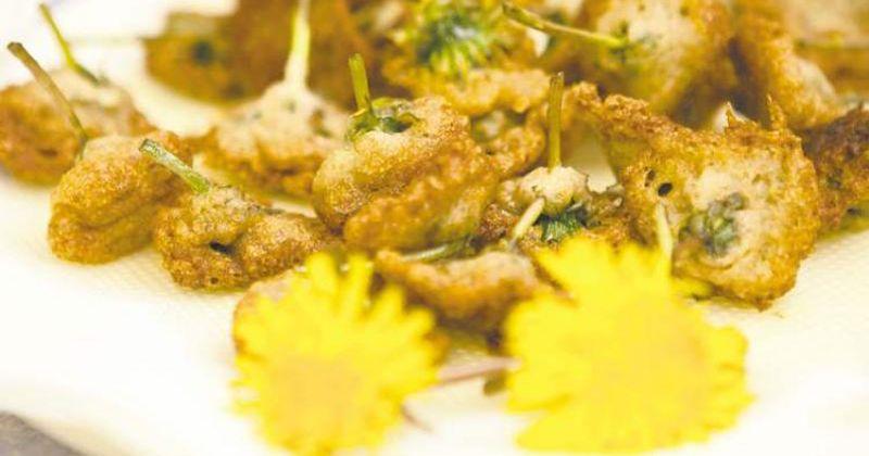 10. Bunga dandelion