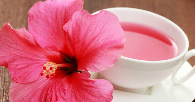 6. Bunga hibiscus (kembang sepatu)