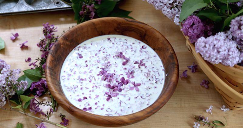 8. Bunga lilac