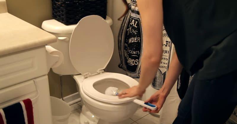 8. Membiarkan sikat toilet dalam keadaan basah