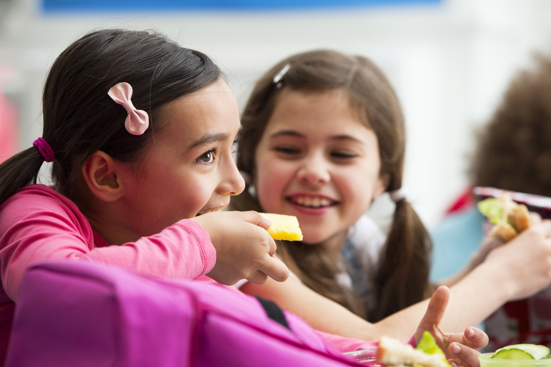 Hari Bekal Nasional, Ini 7 Ide Bekal Sekolah Anak TK Cepat Dibuat