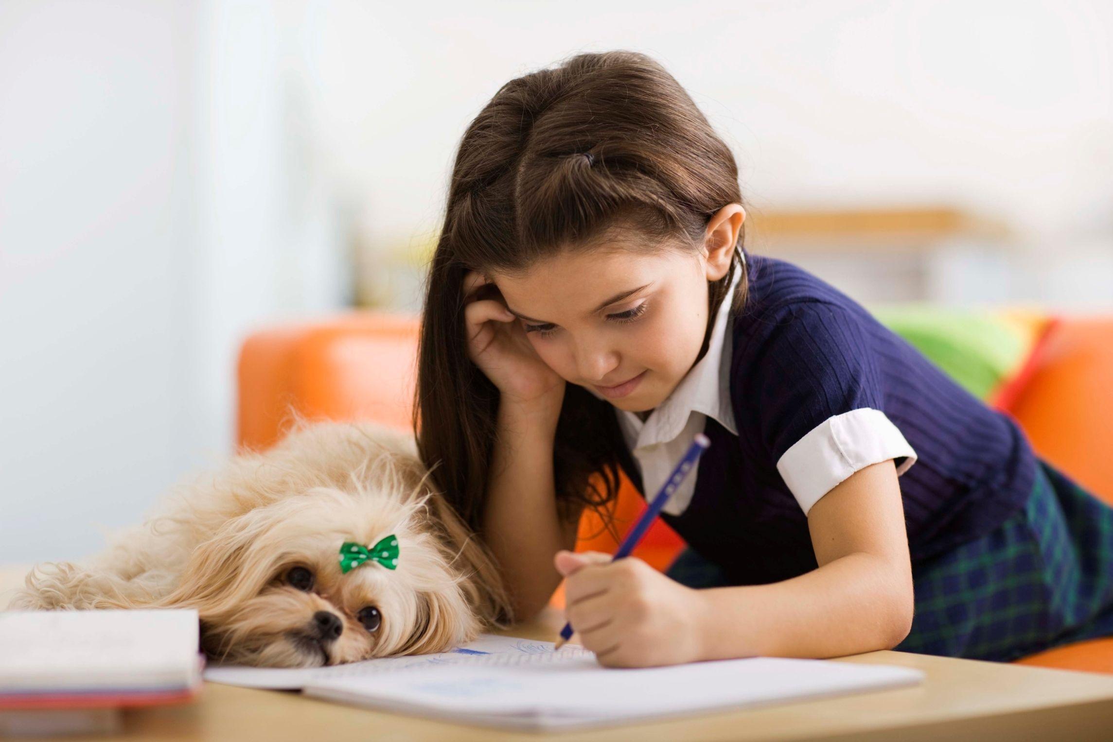 5. Fokus perkembangan studi formal