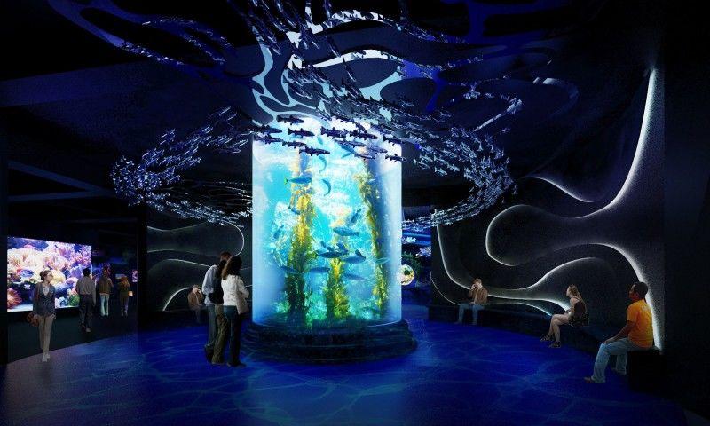 7. Berkunjung ke aquarium raksasa