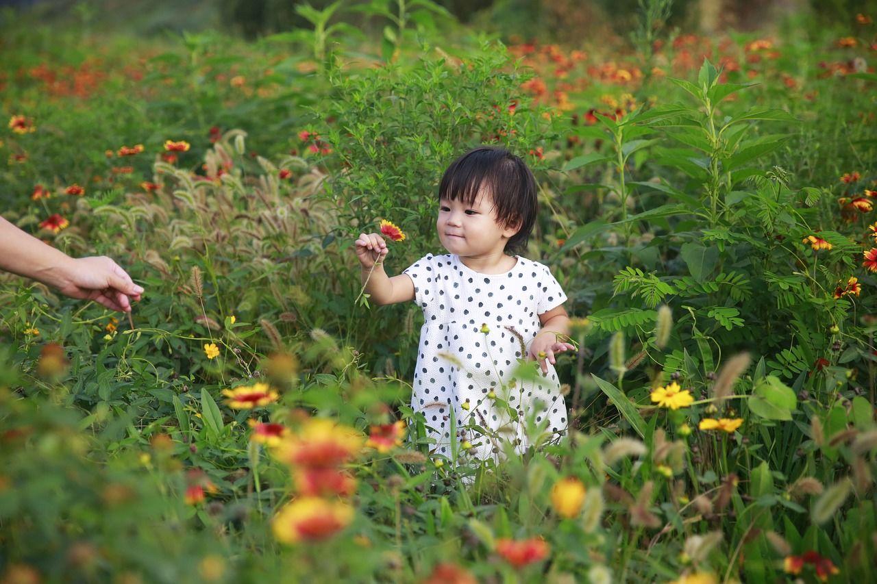 Ketahui 4 Tahap Penting Perkembangan Anak Usia 2 Tahun
