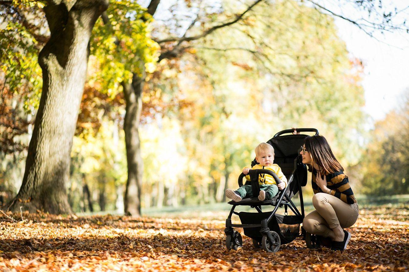 Perhatikan Tips Ini Sebelum Menyewa Perlengkapan Bayi Traveling