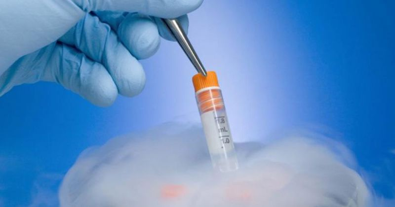 1. Apa itu In Vitro Fertilization (IVF)