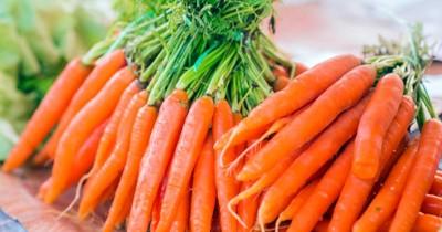 Jangan Terlewat, Ketahui Manfaat Vitamin A untuk Ibu Hamil