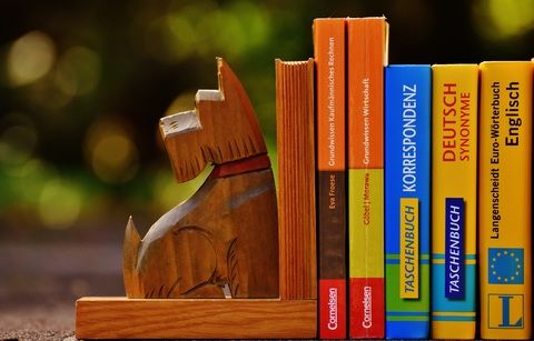 3. Buat perpustakaan mini rumah