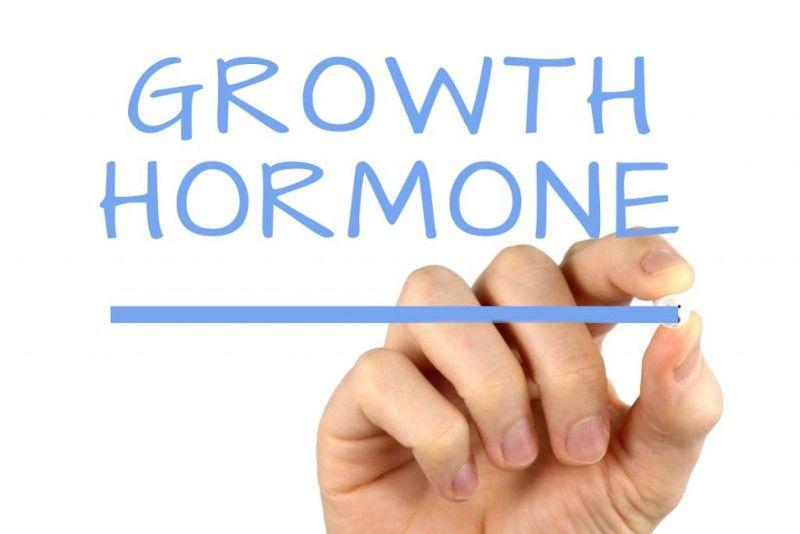 3. Hormon mempengaruhi ovulasi