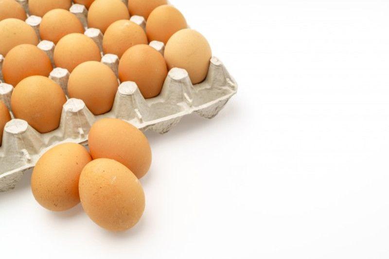 4. Jumlah telur mampu berovulasi