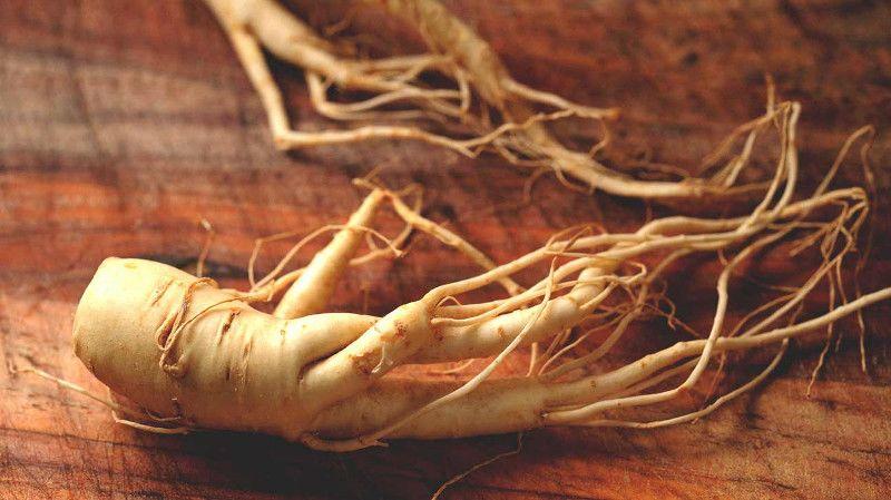 7. Ginseng menambah kadar testosteron dalam tubuh