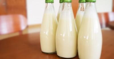 7 Rekomendasi Produk Susu Ibu Hamil