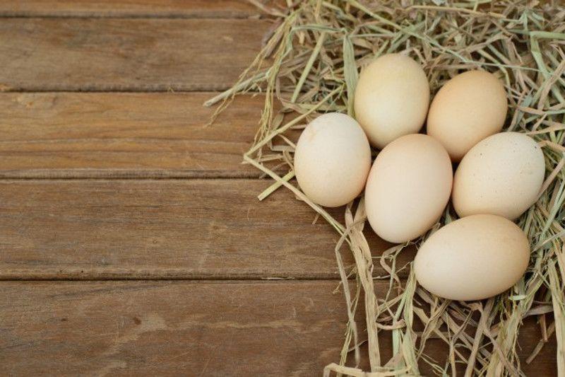 3. Menentukan waktu ovulasi