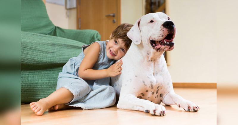 3. Games merawat hewan