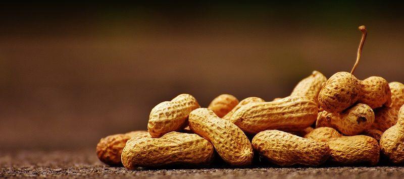 7. Kacang-kacangan