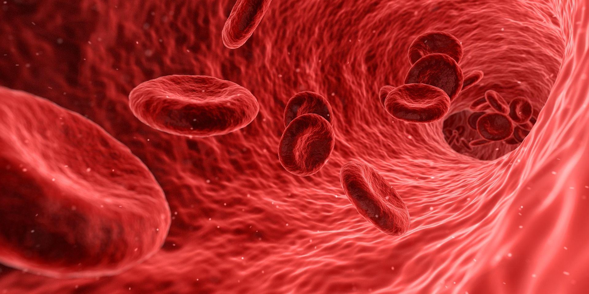 2. Sel darah merah bayi berumur pendek