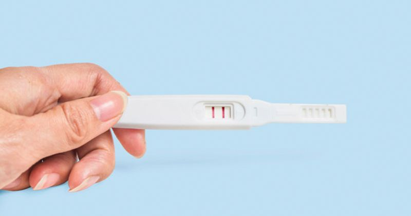 Popmama Tools - Ovulation Calculator