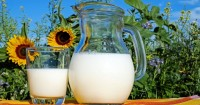 9 Manfaat Minum Susu Kambing Baik Kesehatan