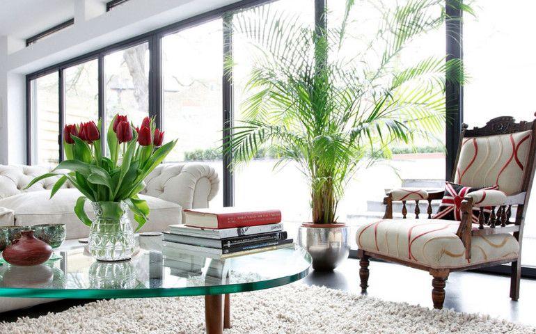Menyejukkan 10 Inspirasi Tanaman Hias Ruang Tamu