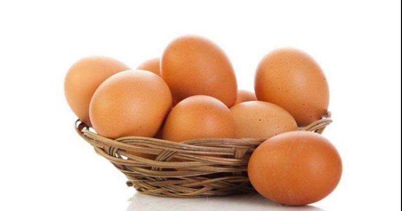 7. Telur