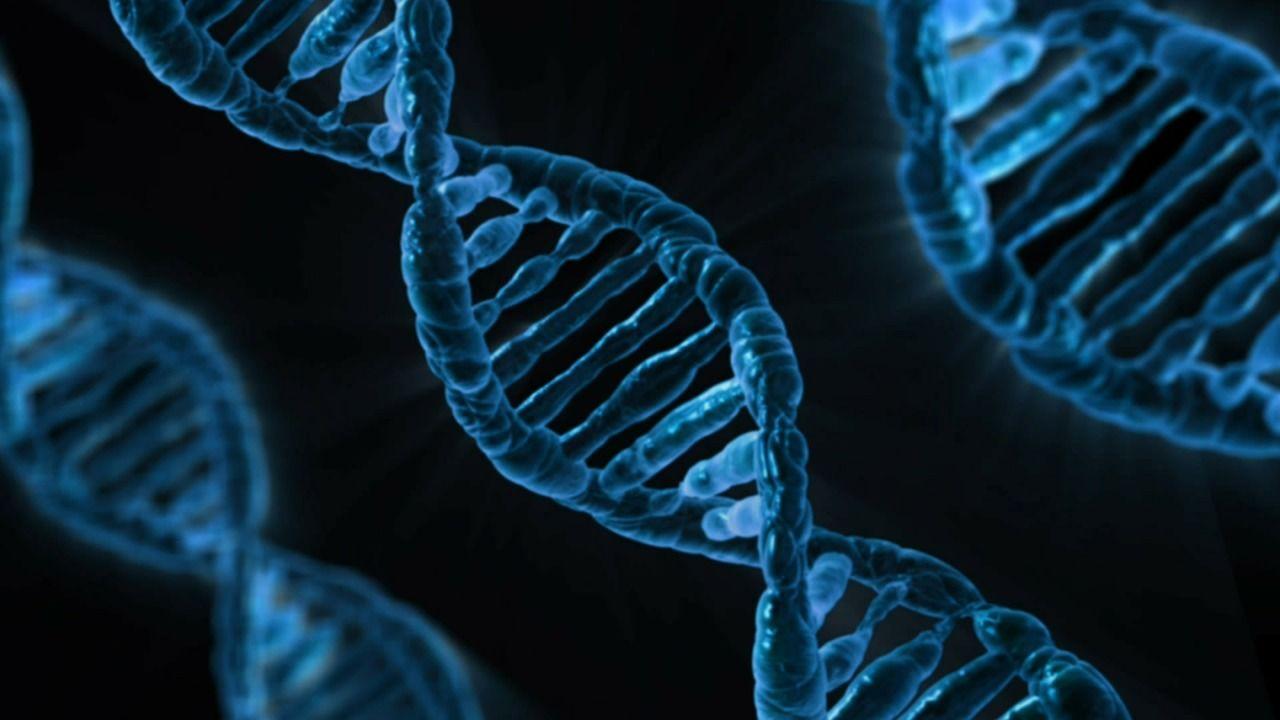 2. Kasus terungkap melalui DNA sama