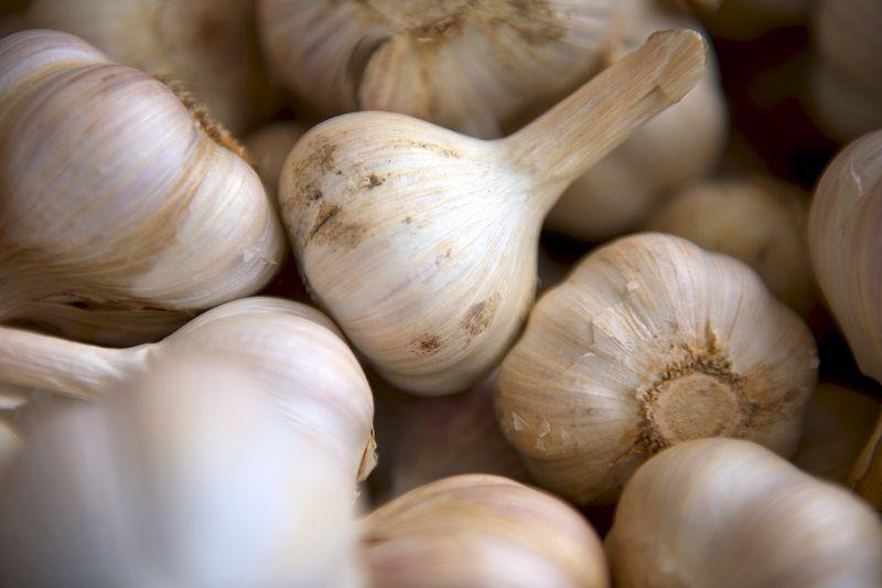 2. Bawang putih