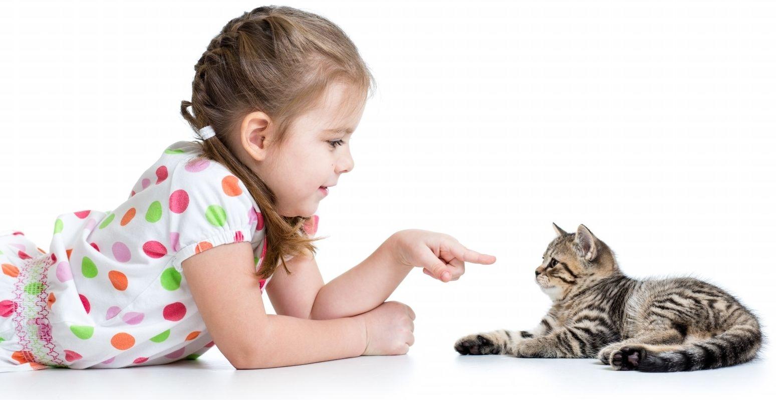 7. Bantu mengurus hewan peliharaannya
