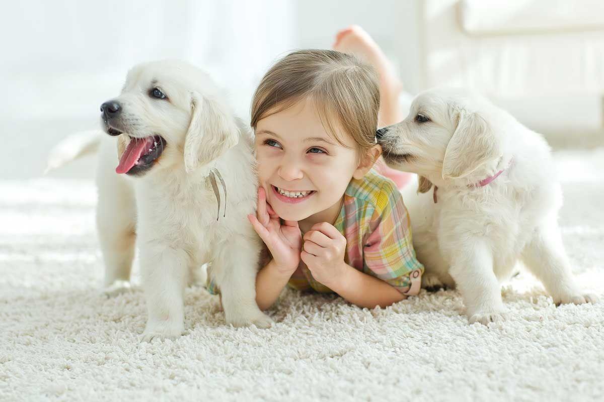 10 Hal Perlu Diperhatikan Membentuk Pribadi Baik Anak
