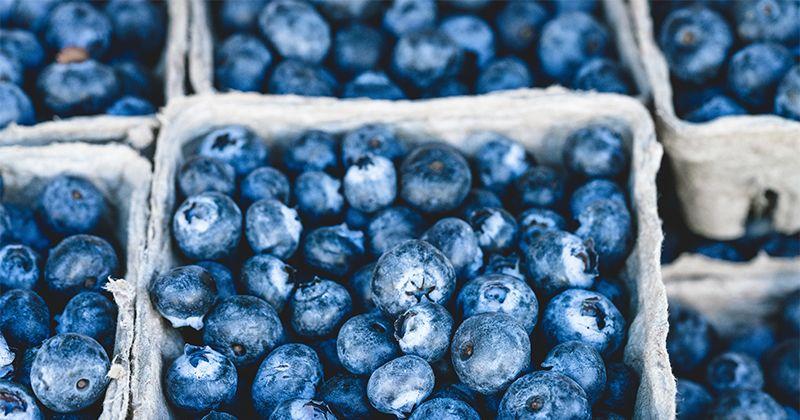 9. Makanan beku tidak mengandung gizi seimbang