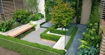 Tips Jitu Menyulap Tanaman Rumah yang Sempit Menjadi Taman Asri