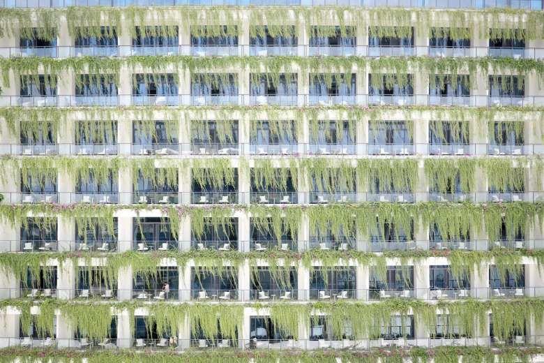 6. Lee Kwan Yew cocok menutupi sebagian dinding bangunan rumah