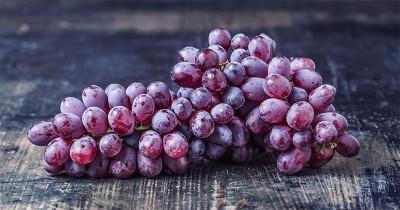 5 Manfaat Buah Anggur untuk Bayi, Bisa Meningkatkan Imunitas Lho!