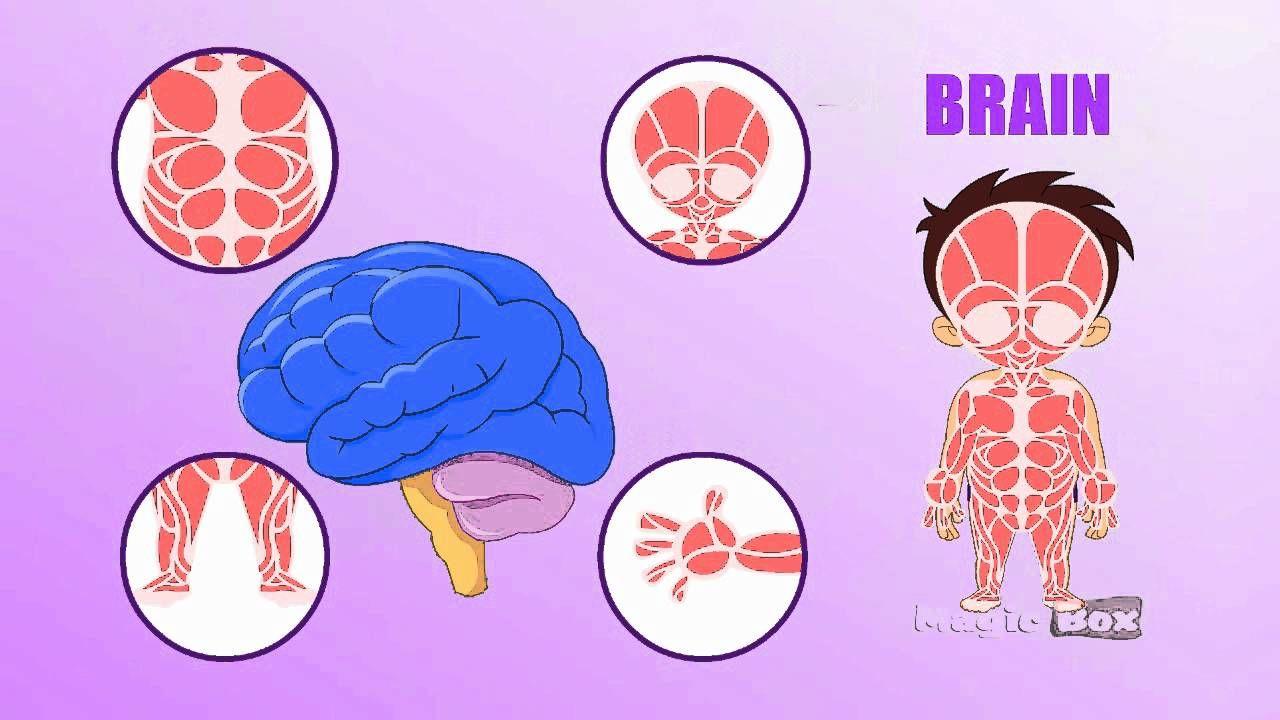 3. Bagaimana gejala anak kecil terkenal Alzheimer
