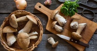 5 Manfaat Mengonsumsi Jamur Saat Hamil