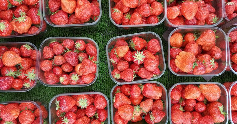 2. Memasak buah sebelum dikonsumsi dapat mencegah alergi