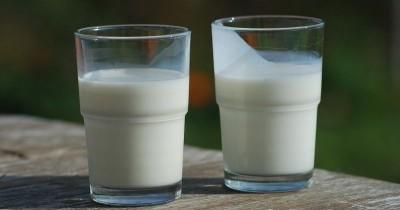 Susu Full Cream Vs Susu Low Fat, Mana Lebih Baik