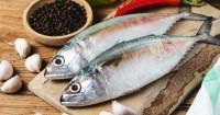 Benarkah Makan Ikan Bisa Meningkatkan Peluang Kehamilan