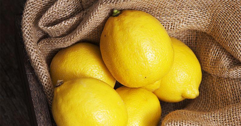 6. Bukan diminum, kali ini gunakan lemon buat basmi semut
