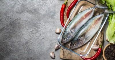 Konsumsi Ikan Berminyak Selama Hamil Cegah Obesitas pada Anak