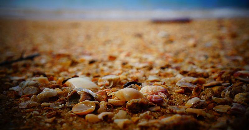 2. Jangan biarkan anak mengubur kaki pasir basah