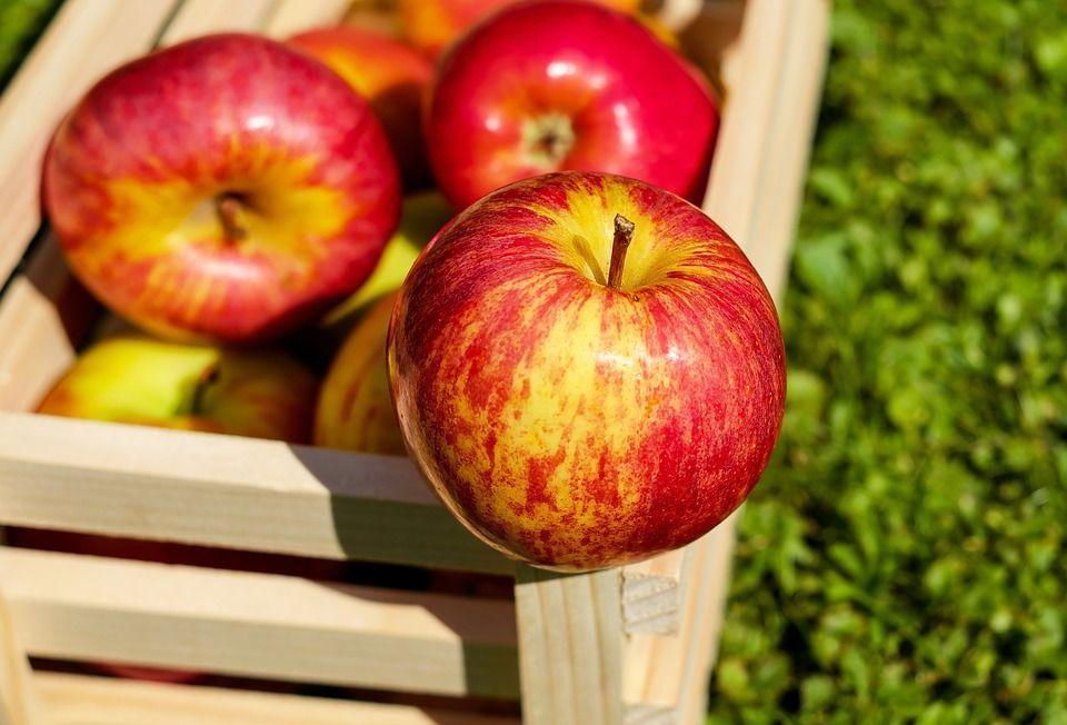 5. Buah apel