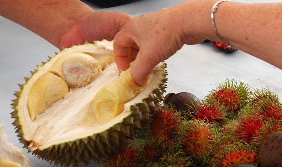 4. Konsumsi durian