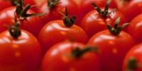 2. Tomat bisa membuat wajah lebih cerah