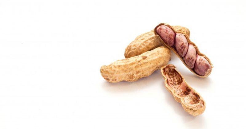2. Makan tanah bukan kacangnya