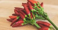 2. Menjejalkan sambal ke mulut anak (hot saucing)